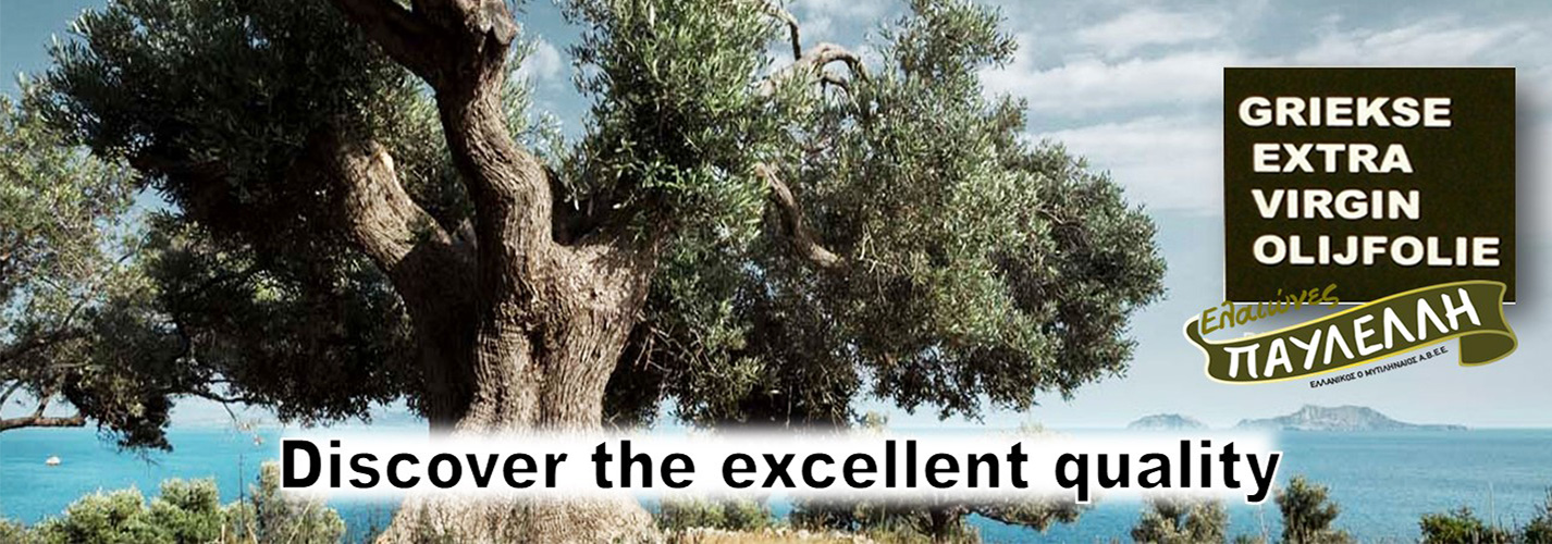 Klasikodeco Griekse Olijfolie
